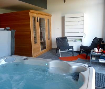 spa jacuzzi et sauna Angles sur l'Anglin